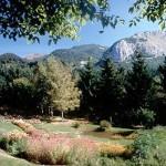 Parco Orecchiella