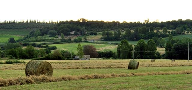 Mugello - zone in Toscana - Tuscany - Italy