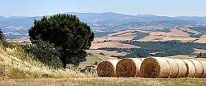 Toscana agriturismo