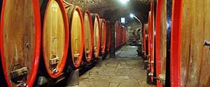 Toscana strade vino e olio e cantine
