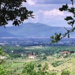 riserva naturale Montalbano