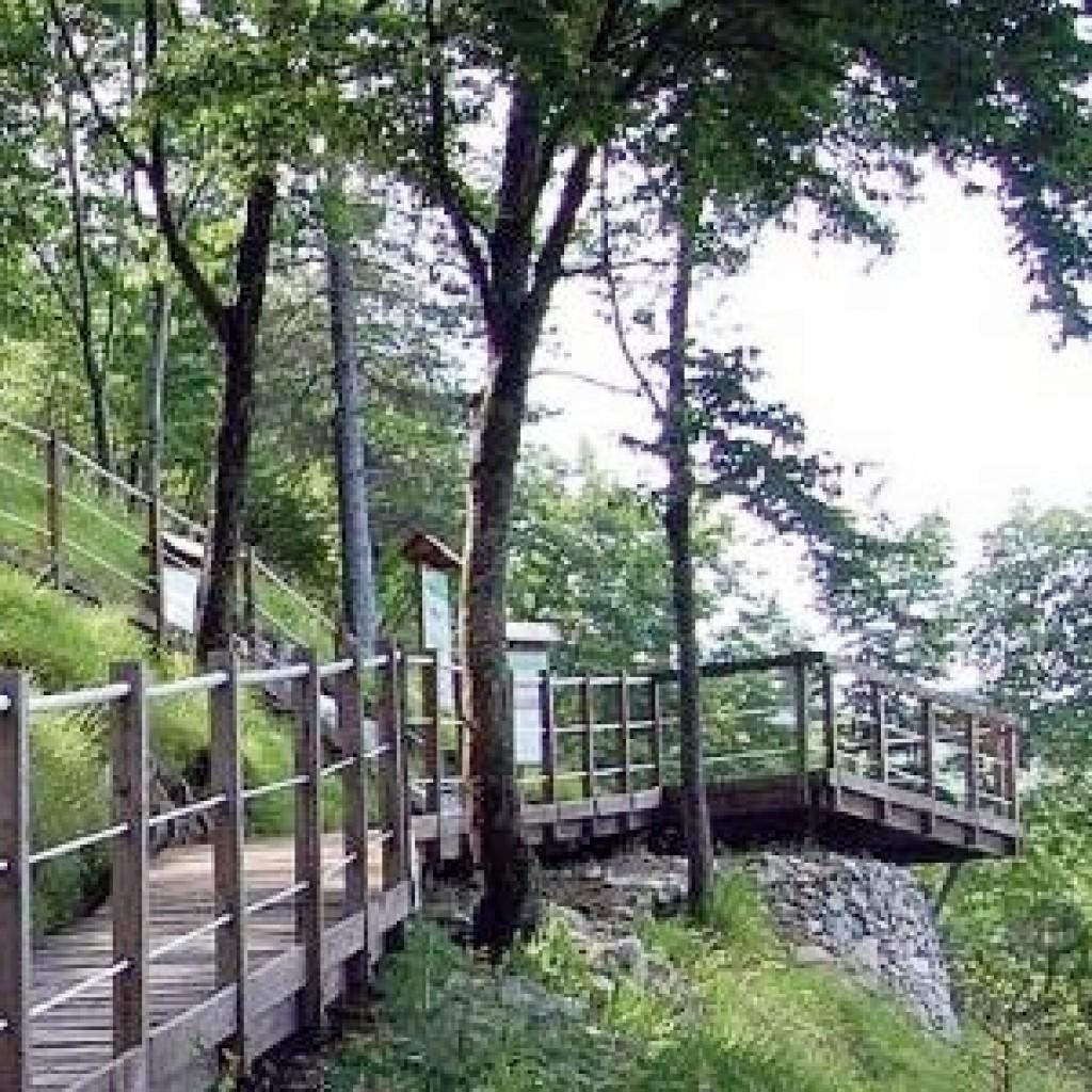 Orto Botanico Abetone