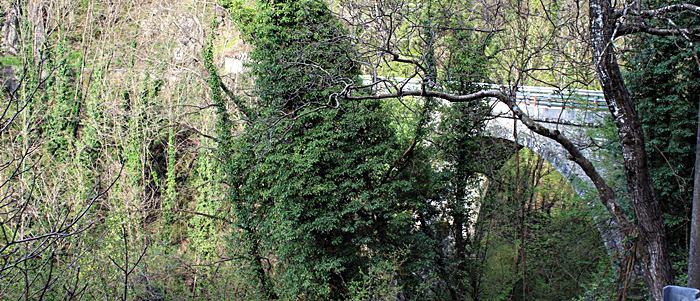San Marcello Pistoiese - Foresta del Teso