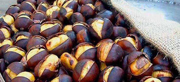 Castagna di Cutigliano - Pistoia