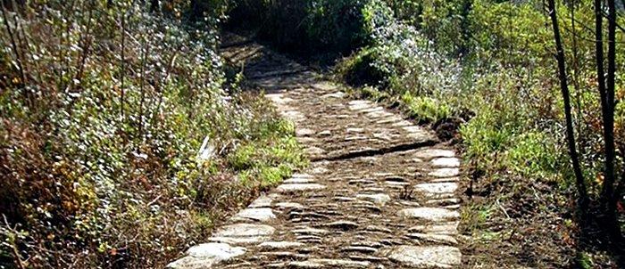 Via Francigena - Toscana