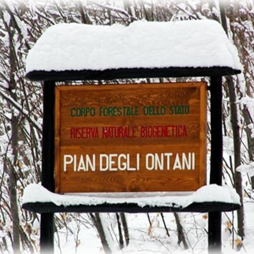 Riserva naturale Pian degli Ontani - Abetone