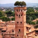Torre Guinigi