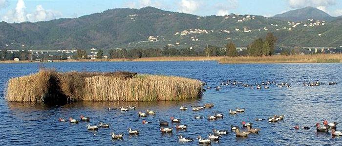 Massarosa - Lago Massaciuccoli