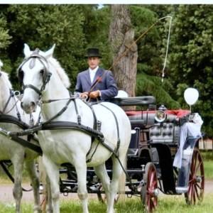 tour carrozza