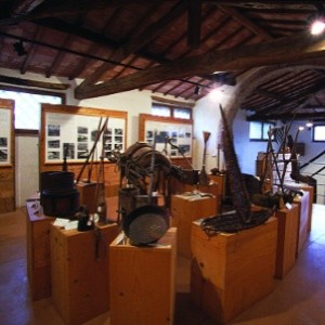 museo mezzadria
