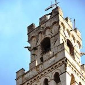 torre del mangia parafulmine