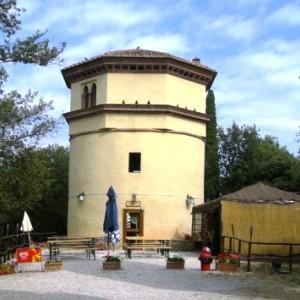 torre molino