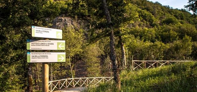 anghiari parco monti rognosi