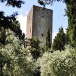 torre belforti