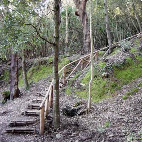 Parco di Montioni (LI e GR)