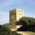 Torre del collelungo