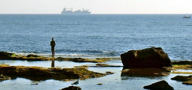 livorno mare