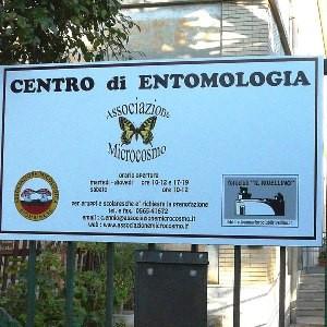 museo entomologia