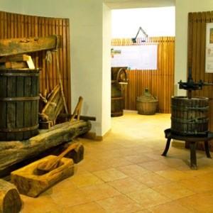 museo vite vino