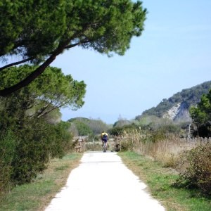 parco uccellina