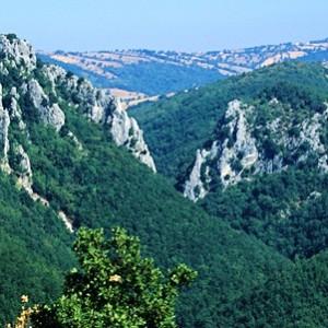 riserva rocconi