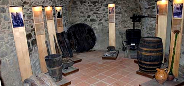 scansano12 museo