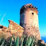 torre avvoltore