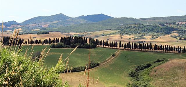 Lajatico - Colline Pisane