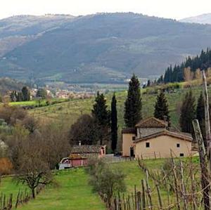 colline fiorentine2