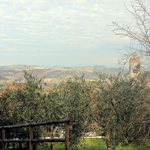 Crete senesi - Toscana