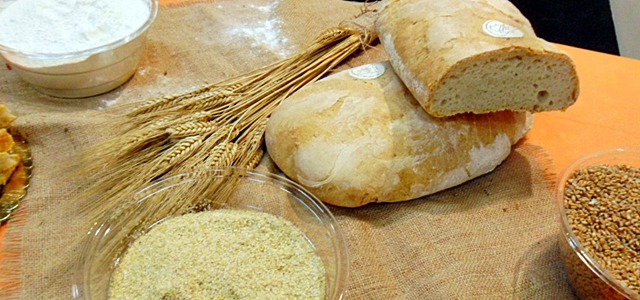 Mangiare bene in Toscana - Pane toscano