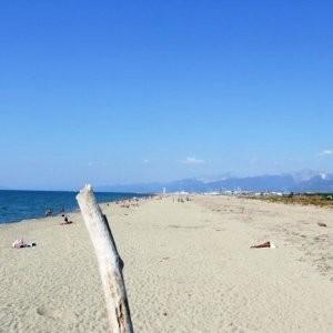 spiaggia lecciona