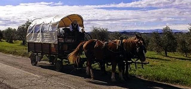 Tour in carrozza nel Chianti