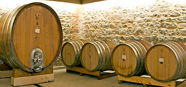 vino montecucco-toscana