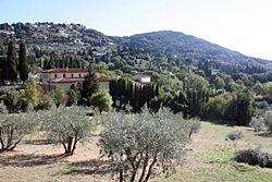 florenc tour fiesole1