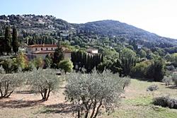 florenc tour fiesole1