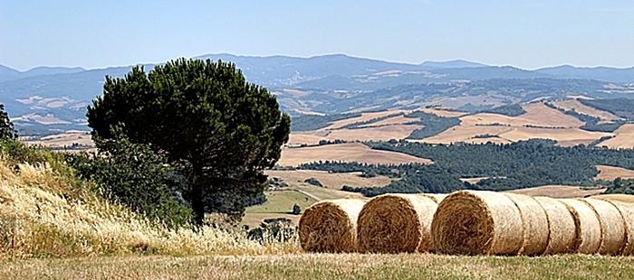 Agriturismi in toscana