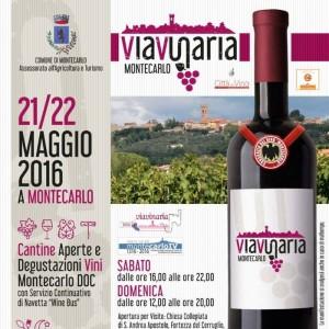 2016-Viavinaria