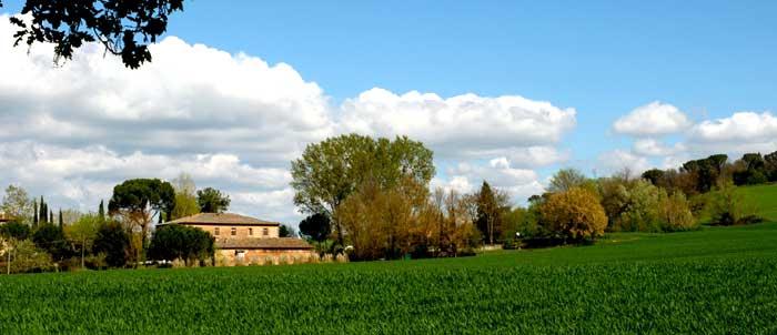 Agriturismo San Fabiano - Monteroni d'Arbia