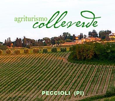Agriturismo Colleverde - Peccioli