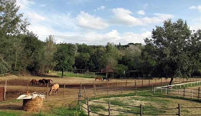 Equitazione in Toscana - Agriturismi con maneggi in Toscana