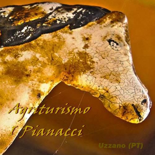 Agrituriso I Pianacci - Uzzano (PT)