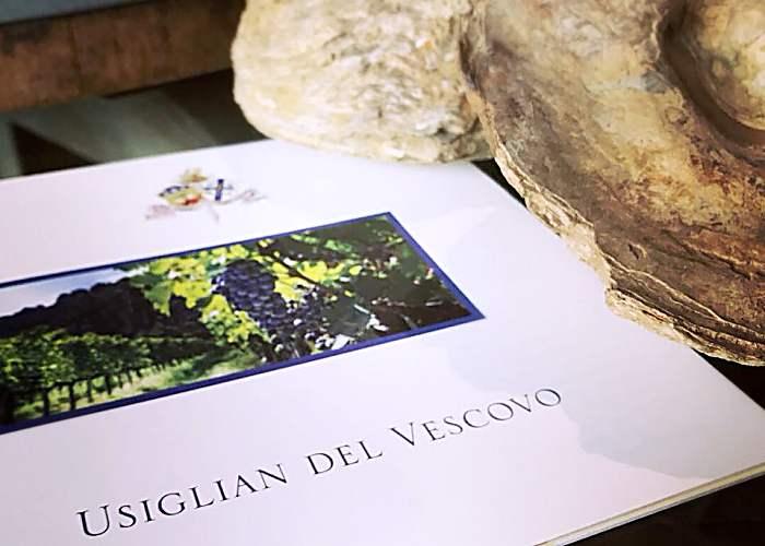 Usiglian del Vescovo vini - Palaia