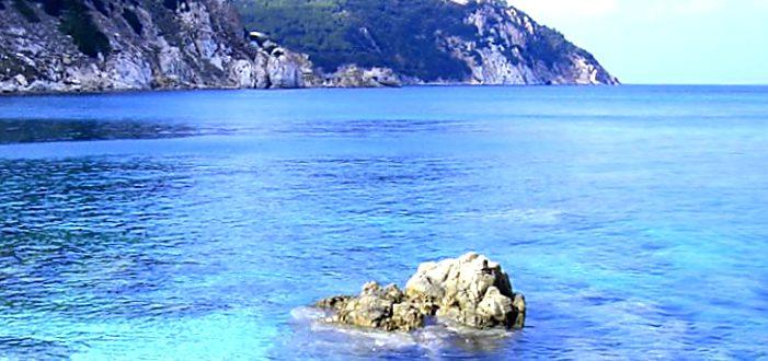 Marina di Bibbona spiaggia