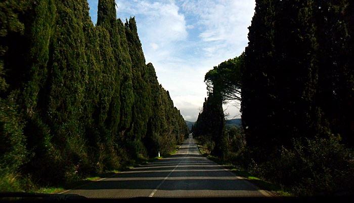 Viale dei Cipressi - Castagneto Carducci