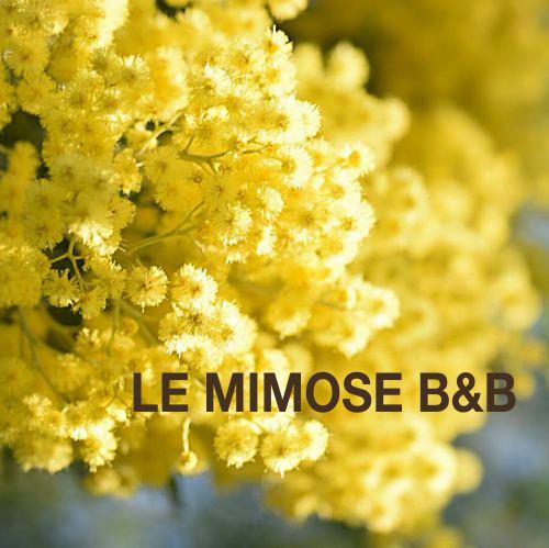 Le Mimose B&B