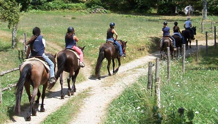 Cortona equitazione