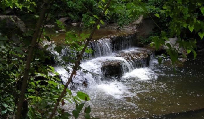 Dicomano riserva naturale