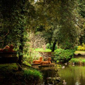 parco di Villa Stibbert - FI