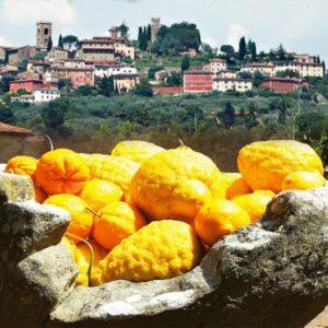 Buggiano Castello (PT) - lagrumi